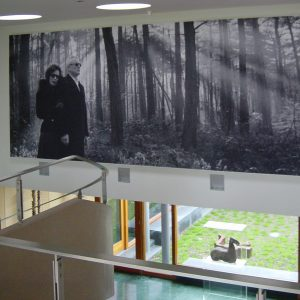 Art Wall Acoustic Wall Covering