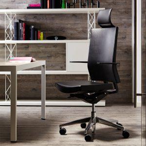 Blue Ergonomic Task Chair