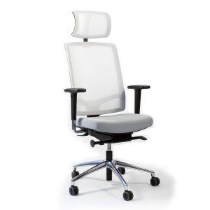 Faveo Task Chair with  Headrest