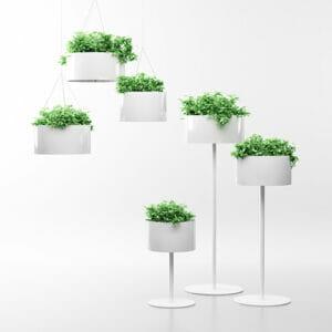Green Cloud Plant Pots