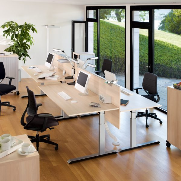 Temptation C Adjustable Desks